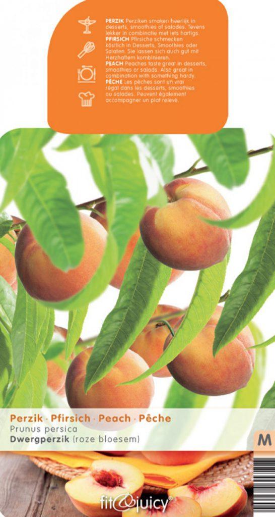 perzikenbomen